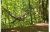 La Siesta Colibri Camo hangmat groen